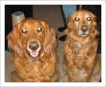 Charlie and Jackson